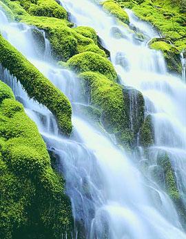 WaterFall_Project_FI